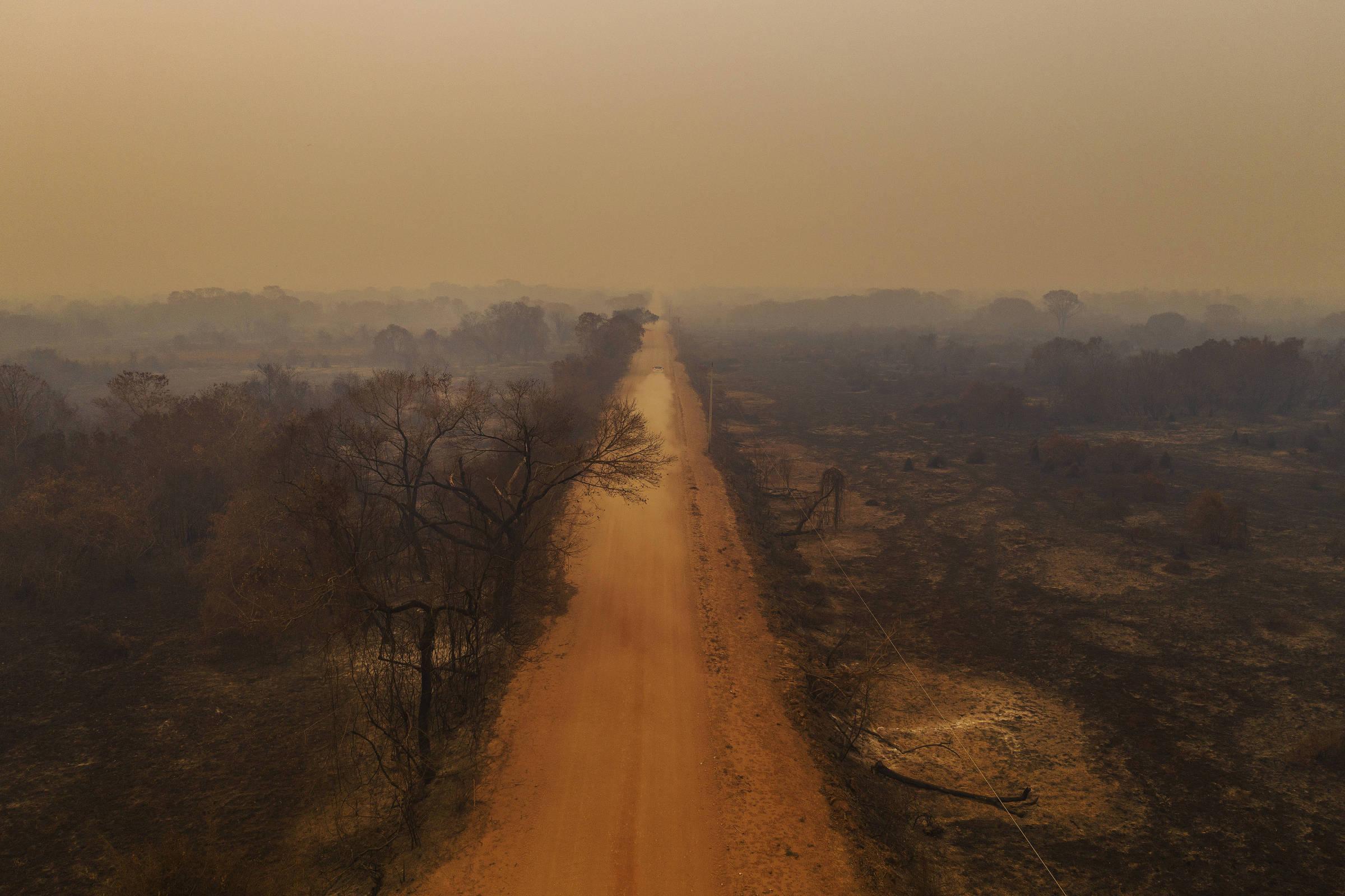 Vivemos uma situação de guerra no Pantanal, diz senador de comissão de queimadas