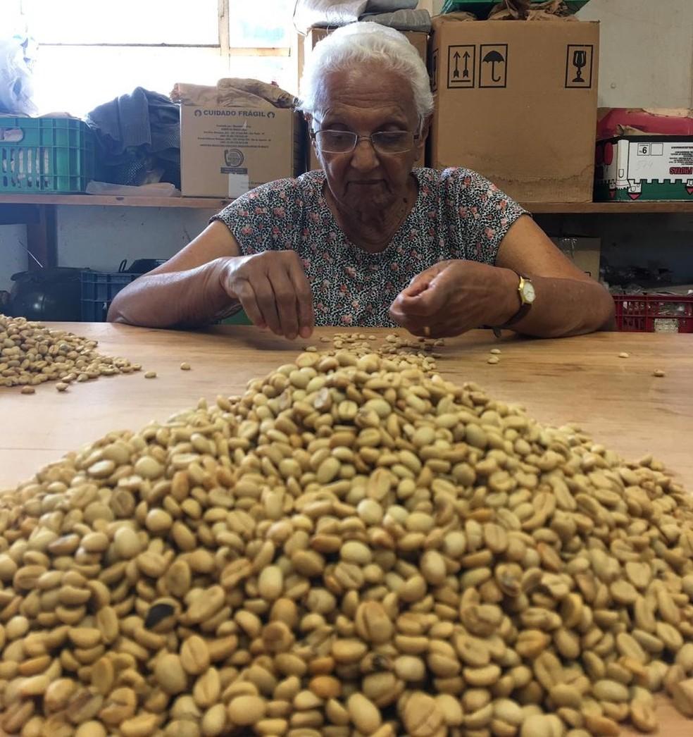 Conheça Ivone Baziolli, que estudou até a 4ª série e ajudou a desenvolver principais tipos de café no Brasil