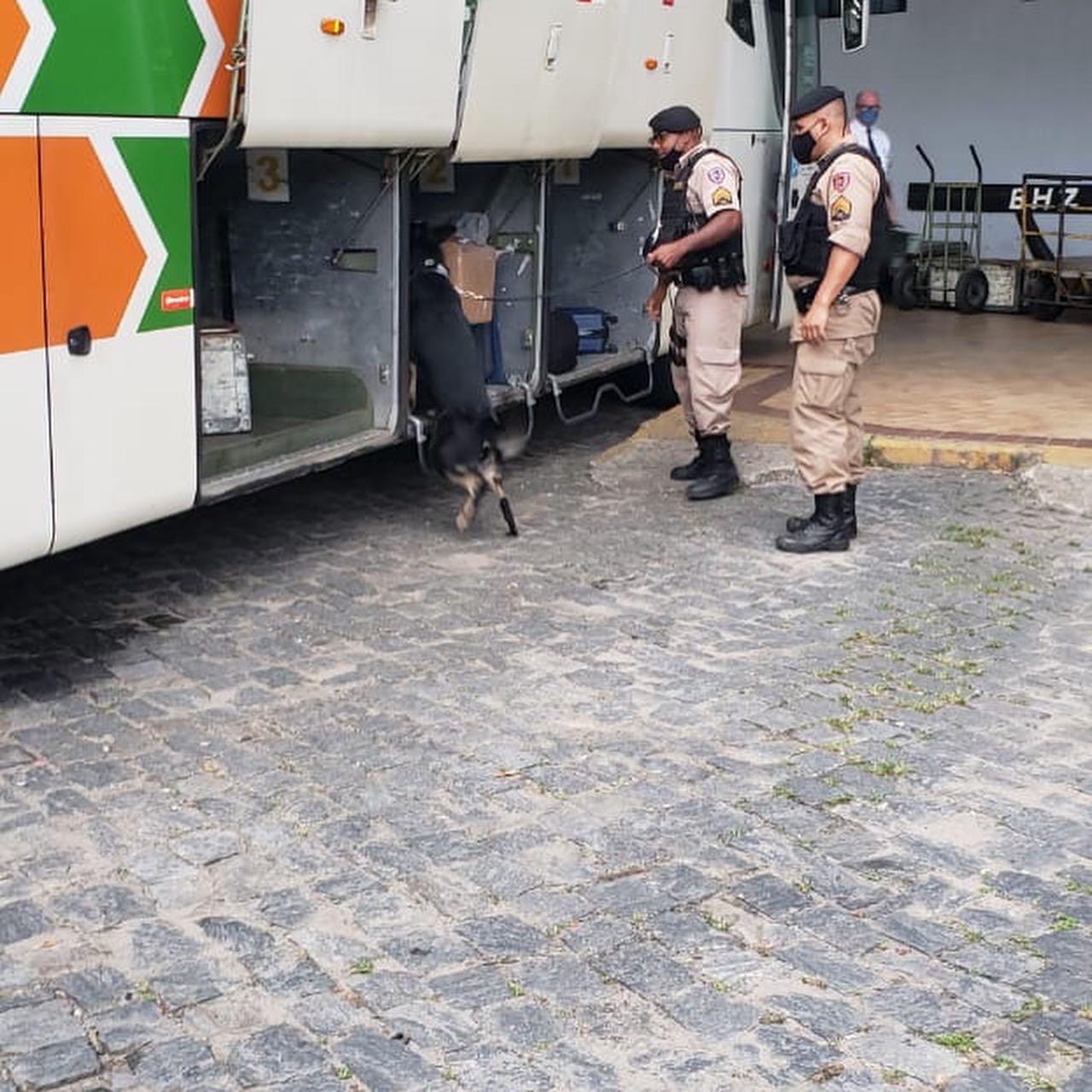 Com apoio dos cães de faro PM apreende drogas