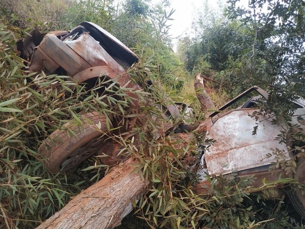 Jovem morre em acidente na MG-111